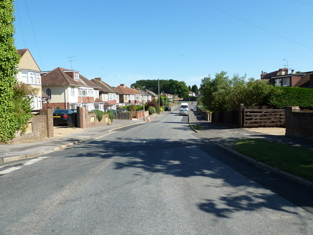 Looking down Stakes Road