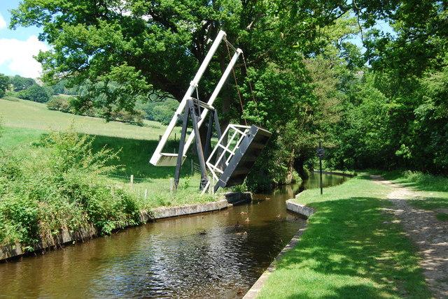 Bridge 44W in early summer