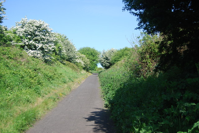 Old railway line: northwards from Robin Hood's Bay