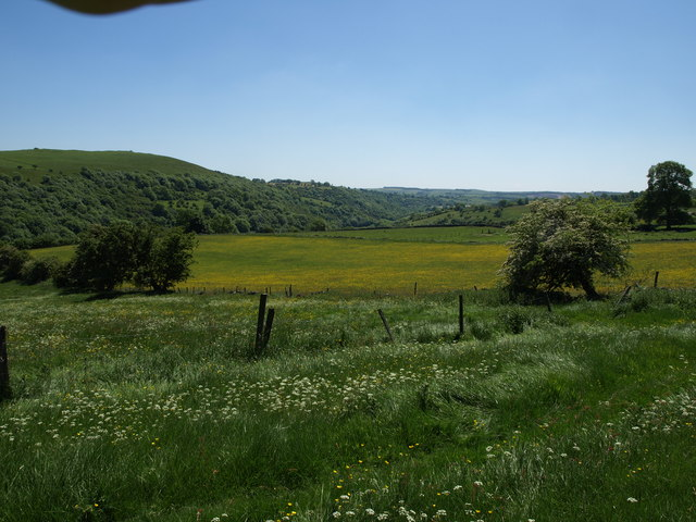 Fields above Hamps Valley