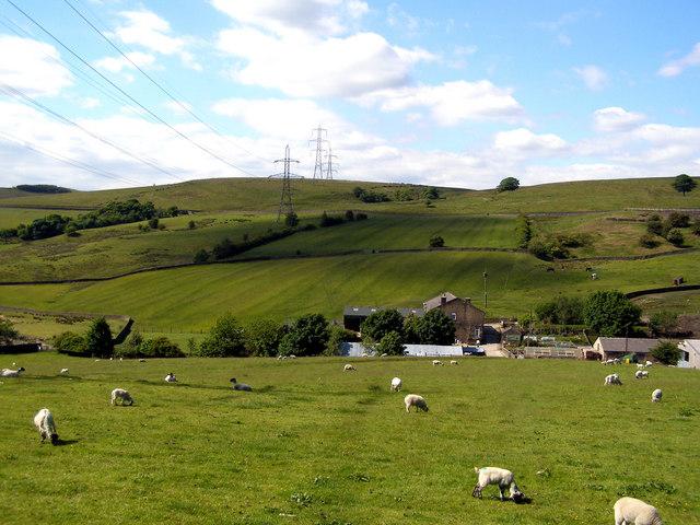 Kitcliffe Farm