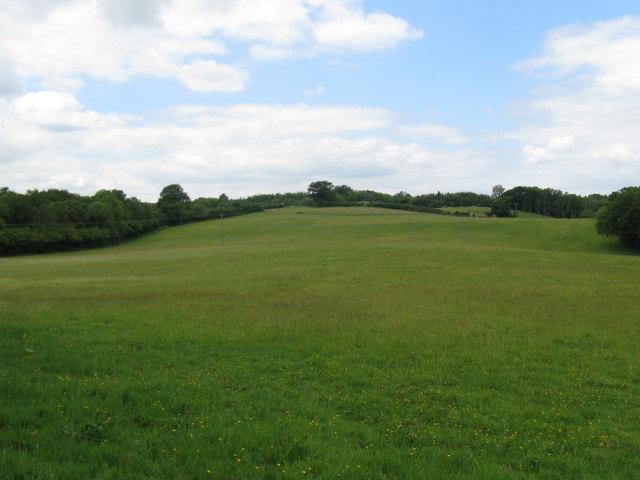 Woodland area called Surrey Belt NE of Shillinglee Park