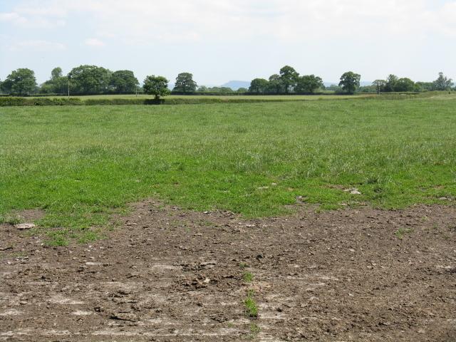Big field near Cottage Farm