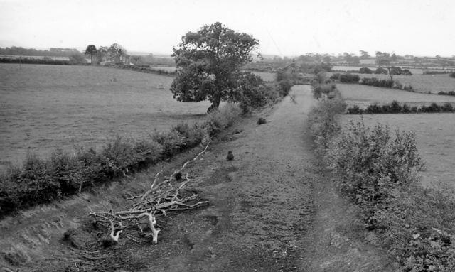 Site of Bromfield (Cumberland) Station
