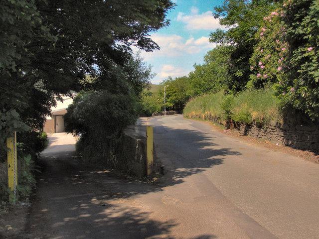 Ogden Lane