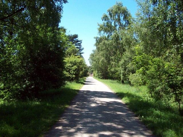 Road through the Chatsworth Estate