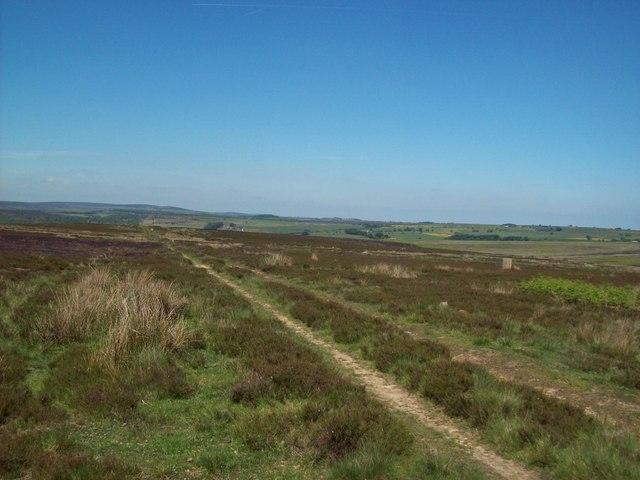 Access land on East Moor