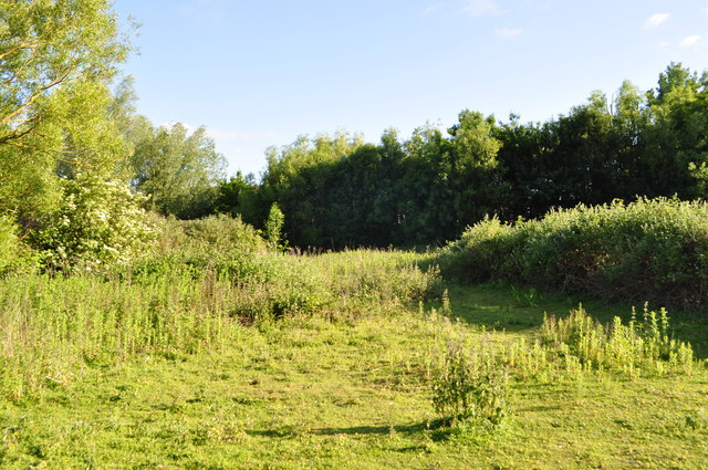 Tescos Idea of a Nature Reserve