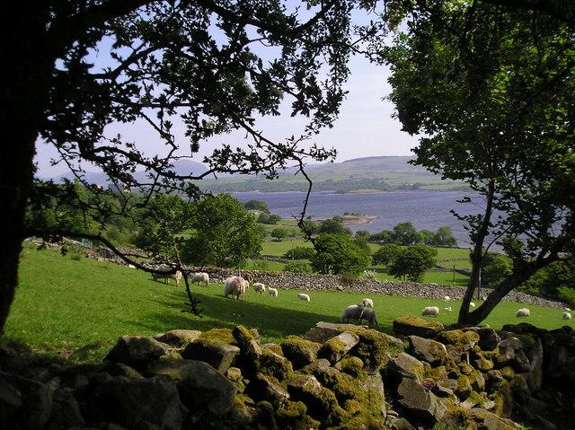 Fields near Moelfryn Uchaf