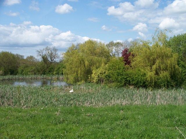 Lake alongside the path