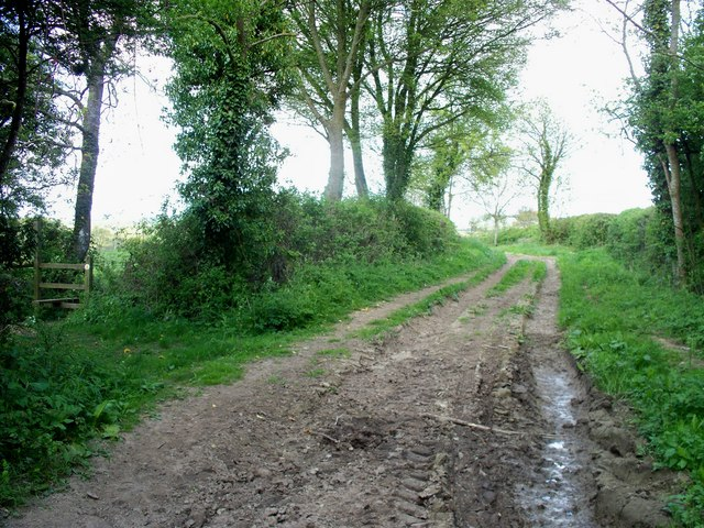 Bridleway and footpath