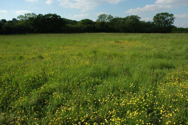 Field near Oldberrow