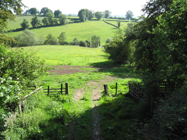 Across the Wash Brook valley near Ashes Farm