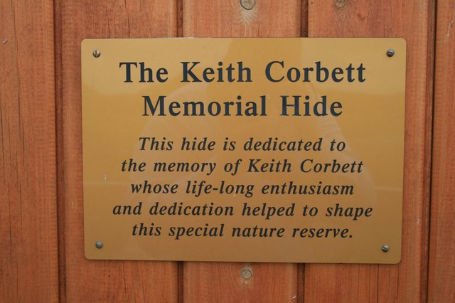 Plaque on a hide