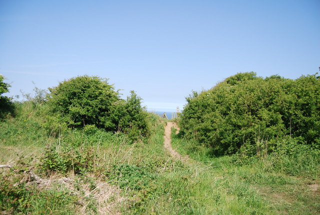 Informal path off the old railway