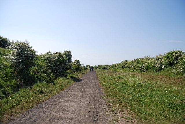 The old railway line, Hawsker Bottoms