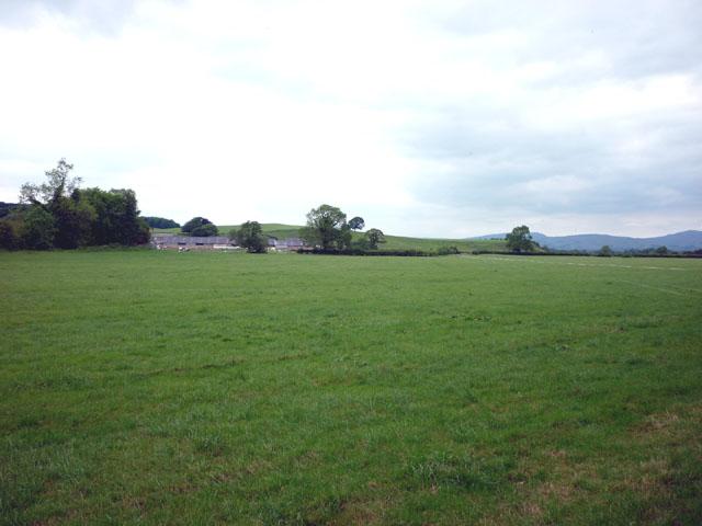 Pasture, Fleets Farm, Gressingham