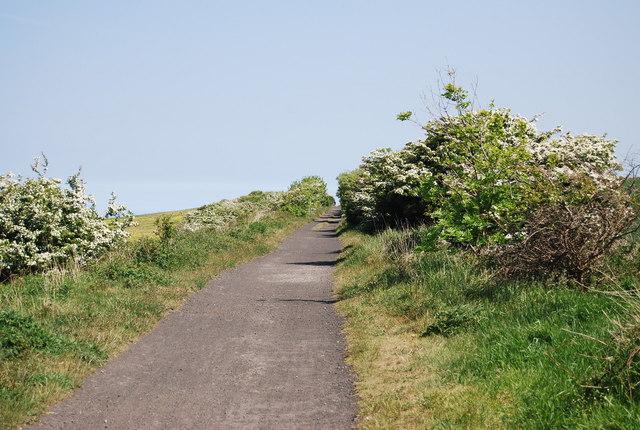 Old railway line heading east