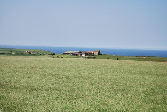 Pasture land near Seaview Caravan Park