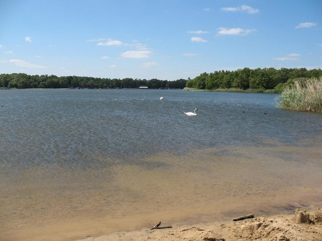 Frensham Great Pond from the beach