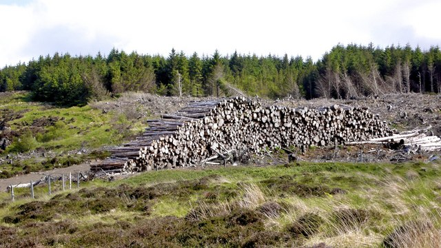Giant stack of cut timber above Loch Losait bay