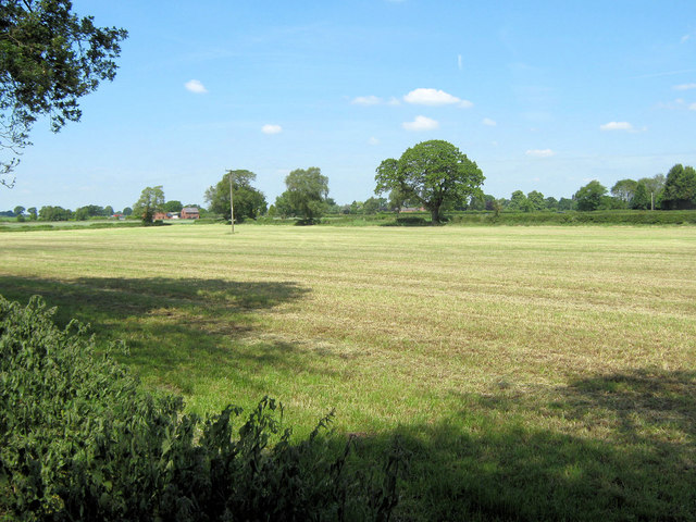 Mown field by the northern boundary