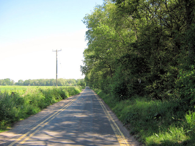 Looking along Bagmere Lane
