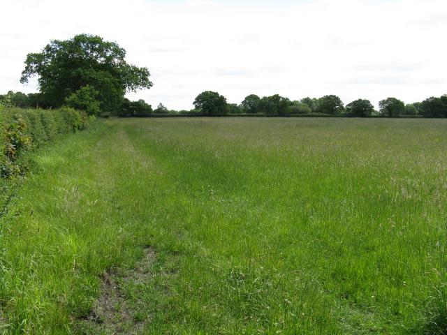 Field near Fox Covert