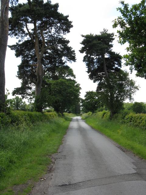 Davenport Lane