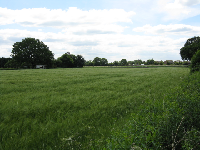 Fields adjoining Davenport Lane (2)
