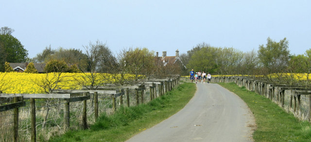 2010 : Estate road to Pinhills Farm