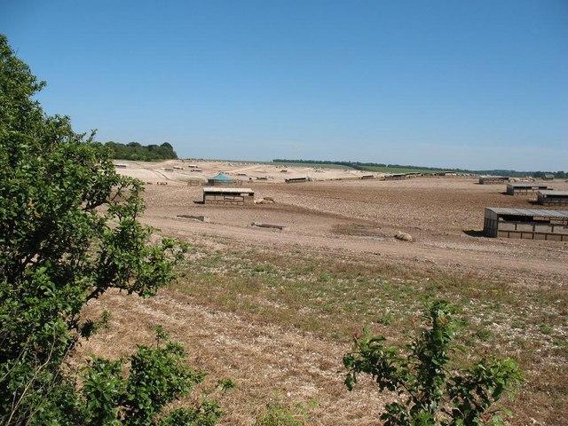Open air pig farm next to A303