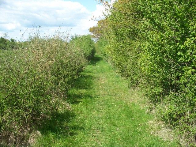 Footpath to Bledington
