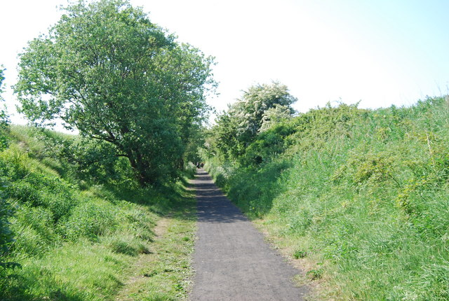 The old railway line in a cutting