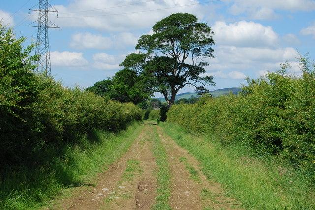 Track linking Aber-Alwen to Cefn-Rûg