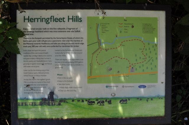 Herringfleet Hills Information Board