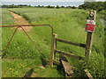 TQ9428 : Saxon Shore Way stile near Appledore Road by David Anstiss