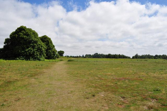 Herringfleet Sandling Open Access Land