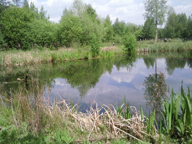A quiet corner of the London Wetland Centre