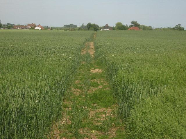 Footpath towards Appledore Road