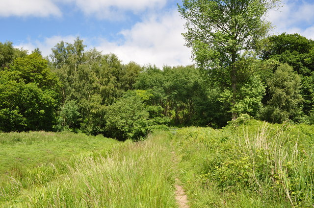 Woodlands of Herringfleet Hills