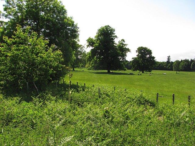 Parkland, Manderston