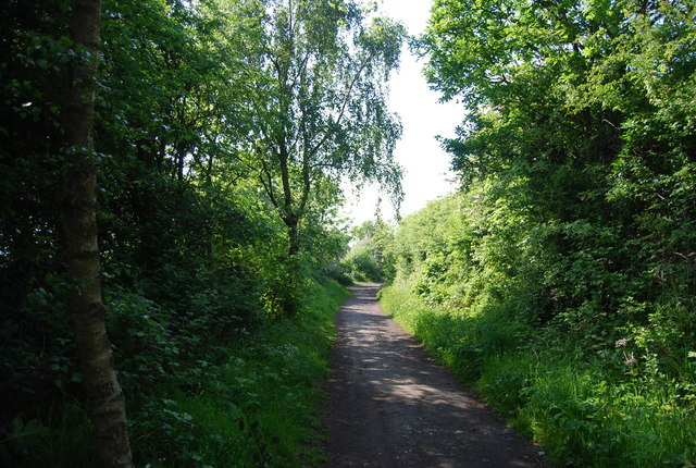 Old railway in Cock Mill Wood