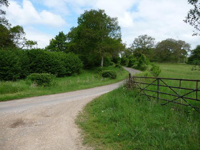Sandydown - Country Lane