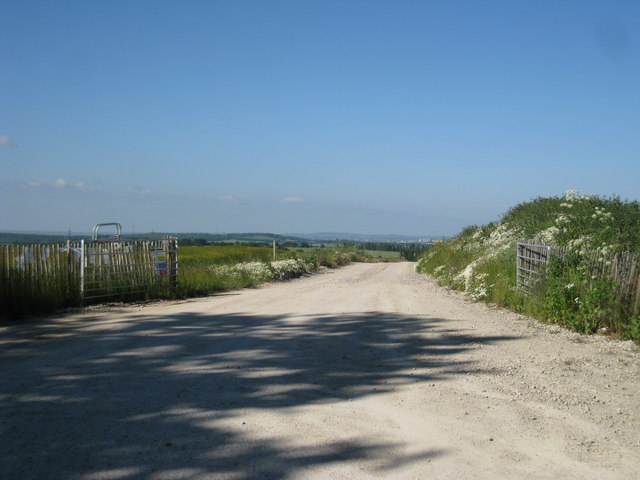New Track off Mussenden Lane