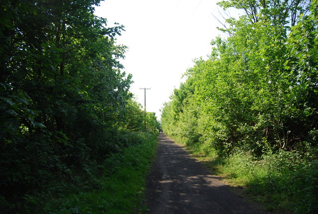 The old railway line