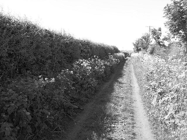Path, Chirnside