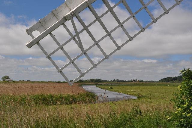 Marshland Scenery