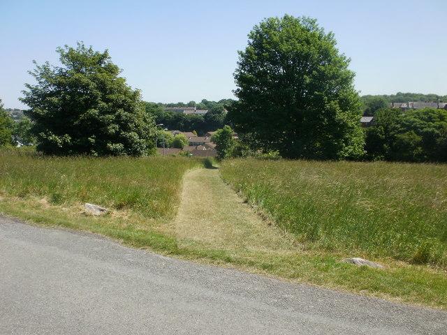 Mown grassy track, Dinas Powys Common