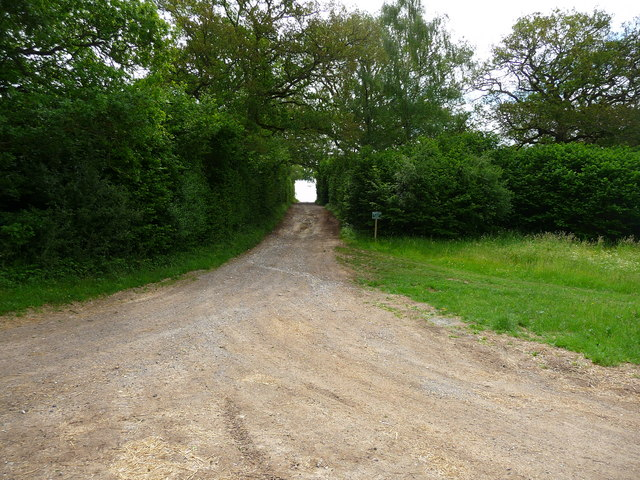 Sandydown - Track